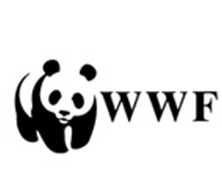 Видеоотчёт на сайте WWF