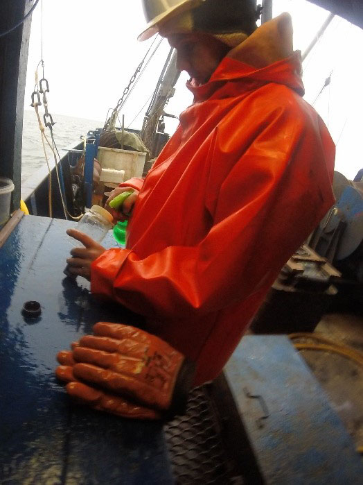 Концентрация проб ихтиопланктона
